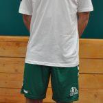 Đorđe Pisarić